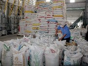 Vietnam sells latest rice crop, Thailand from granaries
