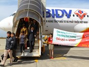 All Vietnam's airlines fly high in 2013