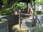Ancient Vietnamese houses set new national records