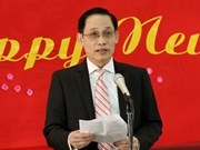 Overseas Vietnamese celebrate the Year of the Horse