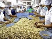 Cashew industry seeks to improve export value