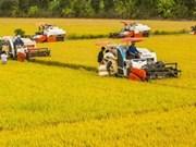 Vietnam, Saudi Arabia meet to promote cooperative ties