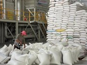 An Giang buys over 220,000 tonnes of rice for stockpile