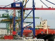 Vietnam-Brazil trade likely to hit 3 bln USD this year