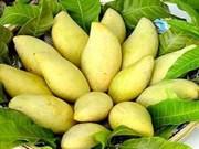 New horizon for Dong Nai fruit exporters