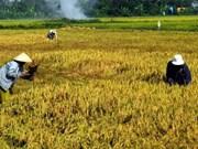 Vietnam, Sudan bolster cooperation