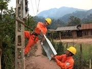 Rural electrification programme sparks success