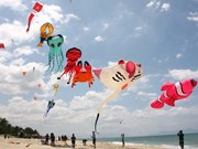 Global kites to adorn Vietnam's southern sky