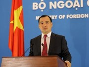 Vietnam opposes illegal foreign activities in its waters