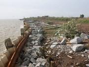 Soil erosion strikes in Mekong Delta province