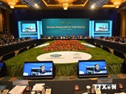 Vietnamese Minister attends APEC meeting in China
