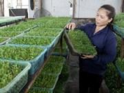 Markets to stock organic goods