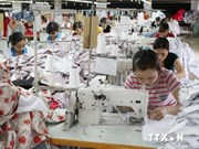 Ha Tinh returns looted assets back Formosa factory