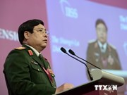 Defence minister calls on countries to share responsibility for peace