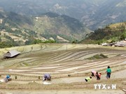 Nearly 34 million USD to reduce poverty in Ha Giang