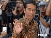 Indonesia's President-elect launches survey on new cabinet