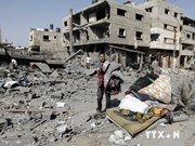 Vietnam urges respect for ceasefire agreement in Gaza