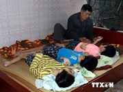 Activities support AO victims in Nam Dinh