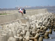 Indonesia to start giant sea wall project soon