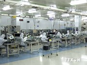 More Japanese firms seek business opportunities in Vietnam
