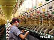 Capital flow pours into local fibre industry