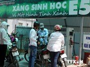 Quang Ngai takes the lead in bio-fuel E5 sales