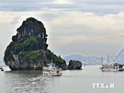 Seaplane flights give aerial view of Ha Long Bay