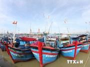 Quang Ngai to build 189 new ships