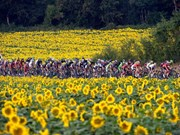 Thailand may host Tour de France next year