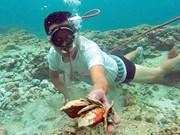 Ancient ceramics found at sea