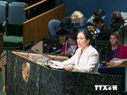 Vietnam applauds IAEA's role and efforts