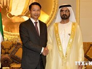 Vietnam deems UAE as top partner in Middle East: Ambassador