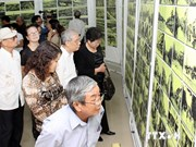 Over 600 documents, artifacts donated to Hanoi Museum