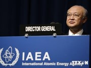 IAEA pledges support to Vietnam's nuclear power