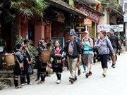 Vietnam, India boost tourism ties