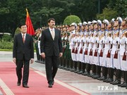 Vietnamese, Hungarian Presidents hold talks