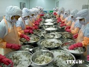 Mekong delta Tien Giang's export turnover hit new record