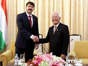 HCM City wishes for closer ties with Hungary: Chairman