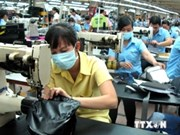 Leather, footwear sector needs more domestic materials