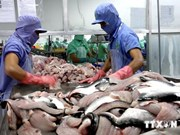 Fisheries urged to cut seed dependence