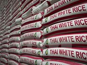 Thailand to sell stockpiled rice to Africa, Middle East