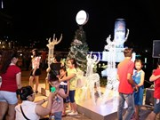 HCM City: Numerous festive activities to welcome New Year 2015