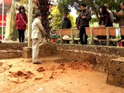 Vestiges on Tran Dynasty's palace in Thai Binh found