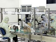 Japanese Hashima opens factory in Vietnam