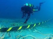 Sub-marine cable repair to be completed by January 24