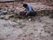 Well-preserved ancient kiln found in Binh Dinh