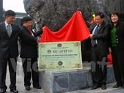 Record set for Vietnam's biggest coal monolith