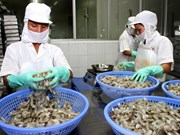 Seafood, agro-forestry exports drop 14 percent in January