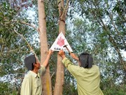 Long dry spell increases risk of forest fire