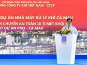 Construction of gas processing plant in Ca Mau starts